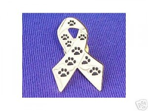 Rescue Ribbon Lapel Pin