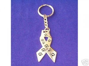 Rescue Ribbon Key Chain